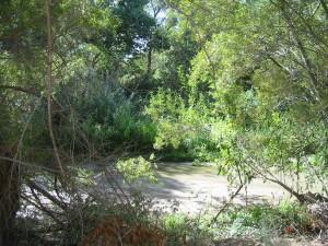 Redlands Conservancy open space preservation San Timoteo Nature Sanctuary