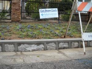Redlands Conservancy historic preservation cut-stone curb restoration program