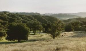 Redlands Conservancy land trust open space acquisition in Live Oak Canyon