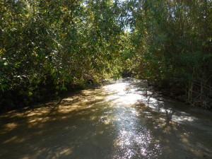 Redlands Conservancy Land Trust - San Timoteo Nature Sanctuary