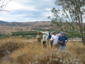 Redlands Conservancy Land Trust Cabinet - Carriage Trail San Timoteo Nature Sanctuary