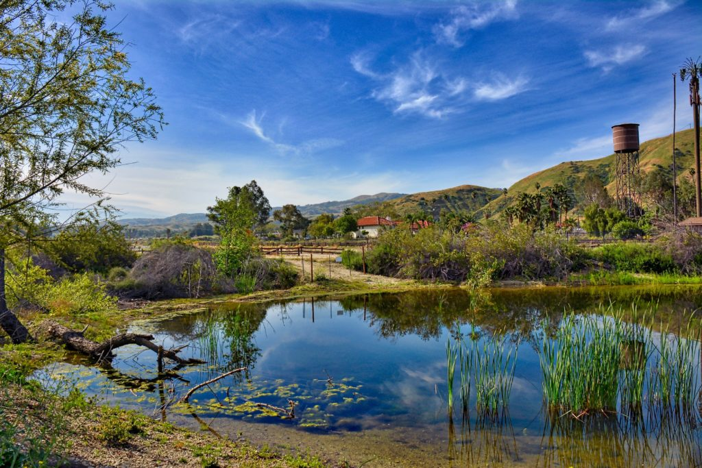Beverley Pond - Redlands Conservancy