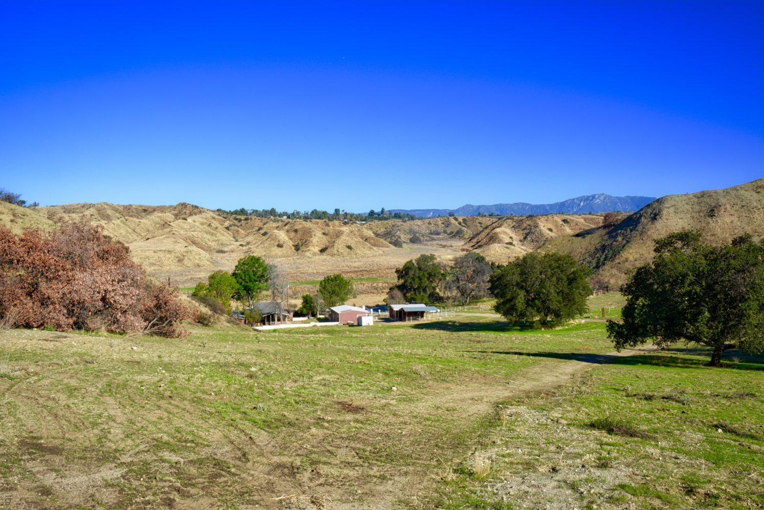 Redlands Gateway Ranch - Drive to the Finish! | Redlands Conservancy