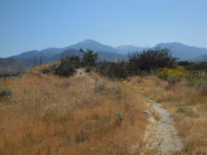 Trails at 10 - Herngt 'Aki'
